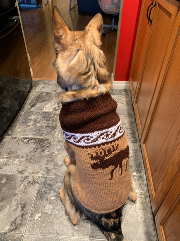 moose_sweater.png